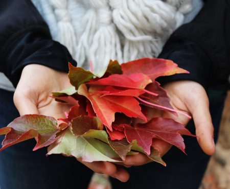 Three ways to welcome Fall, without a giant sugary latte